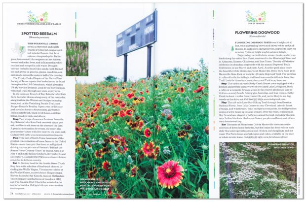 Full page spread in April 2016 issue of Texas Highways magazine. Image is of widflowers on remnant patch of Blackland Prairie, Winfrey Point, White Rock Lake, Dallas Texas, USA