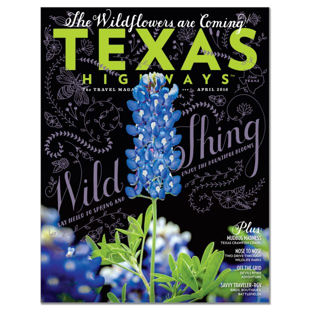 Cover of Texas Highways magazine, April 2016, with image by Sean Fitzgerald. Bluebonnets, Cedar Hill State Park, Texas, USA.